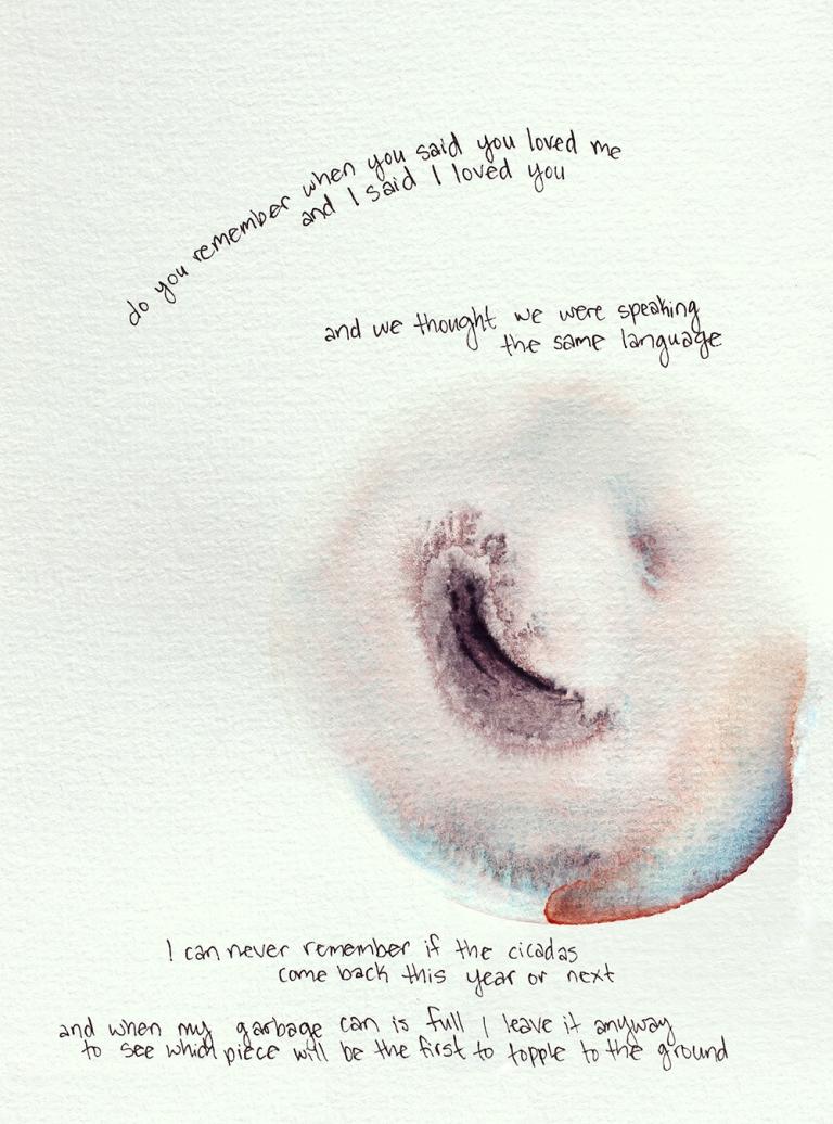 poemcicada